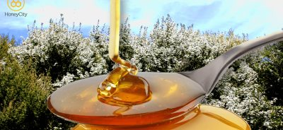 What is Manuka Honey UMF®