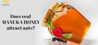 Does Manuka Honey attract ants?