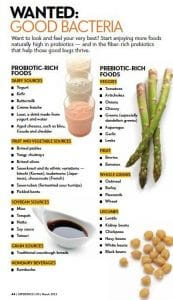 Prebiotic and probiotics food source