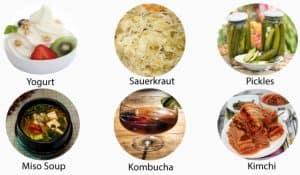 Probiotics healthy food source