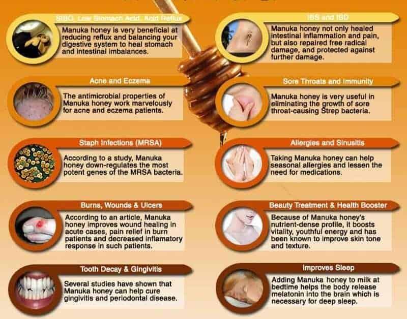 Manuka Honey Uses and Benefits