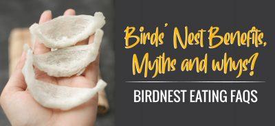 Birds' Nest Benefits, Myths and whys? Birdnest Eating FAQs