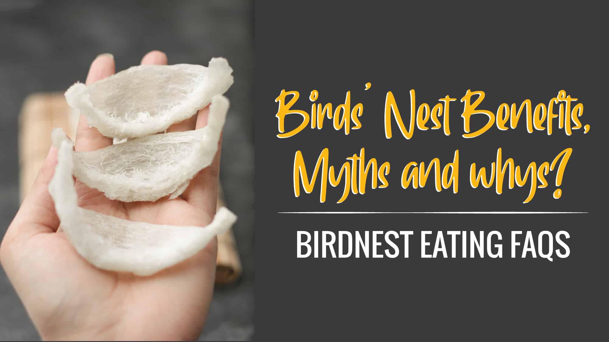 Birds Nest Benefits Myths And Whys Bird S Nest Eating Faqs Honeycity Singapore Authentic Certified Manuka Honey Health Food