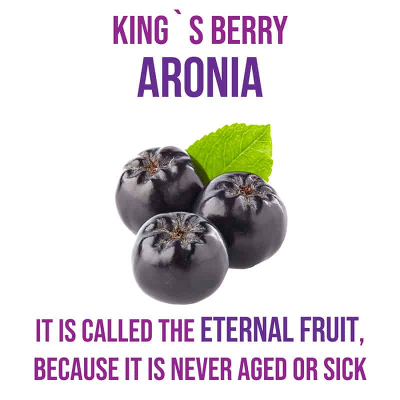 Eternal Fruits of KDYALOE Organic Aloe Saponaria Aronia Berries juice