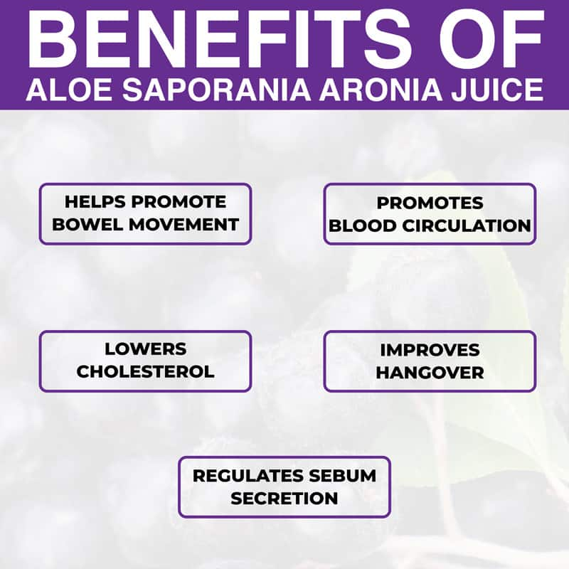 Benefits of KDYALOE Organic Aloe Saponaria Aronia Berries Juice Drinkable Konjac Jelly