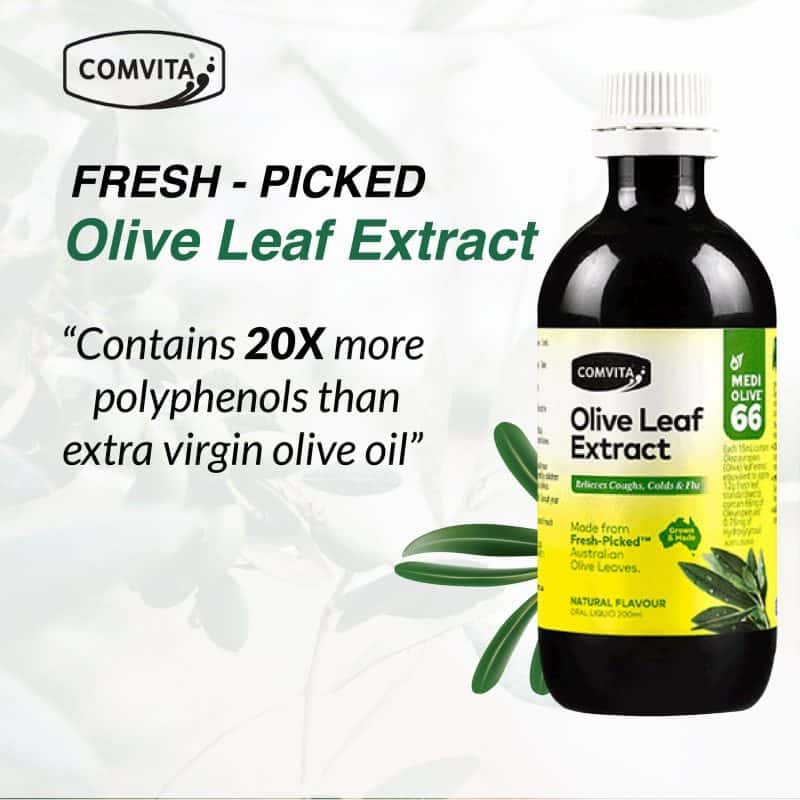 Fresh - Picked Olive Leaf Extract